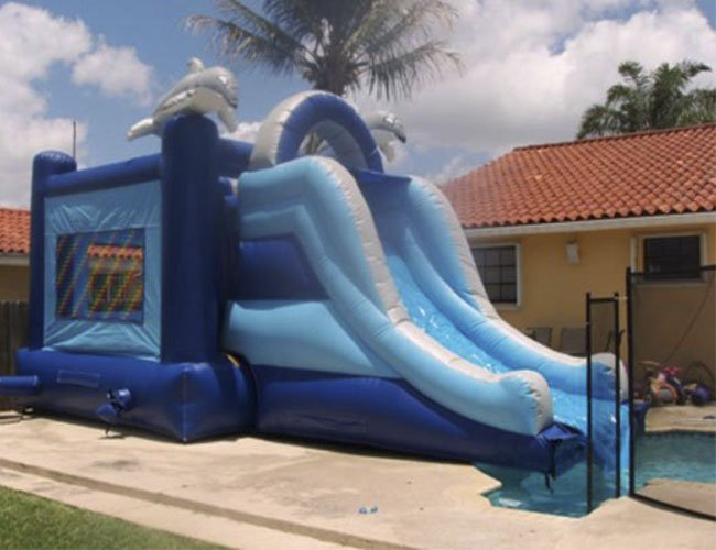 Dolphin Bounce Water Slide no Pool - My Florida Party Rental