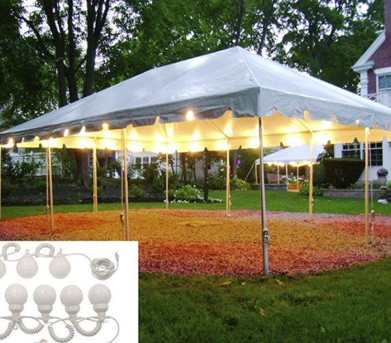 Tent Globe Lights My Florida Party Rental