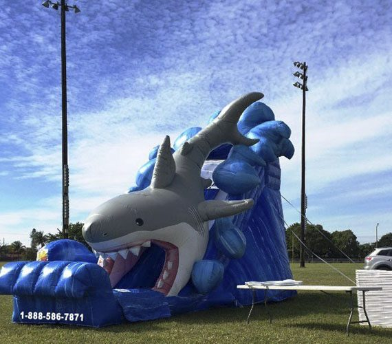 Shark Inflatable Dry Slide My Florida Party Rental